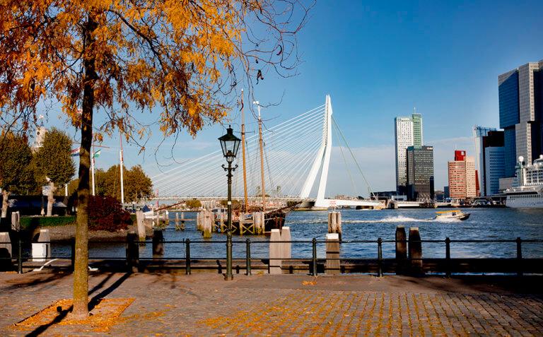 Rotterdam in de herfst Iris van den Broek